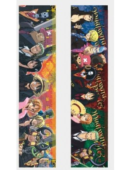 One piece ruler